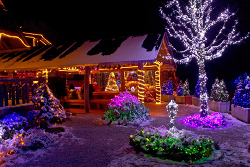 christmas fantasy lodge and tree lights ville de