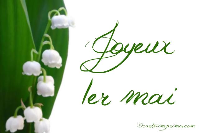 1er mai et muguet - fleurs en image
